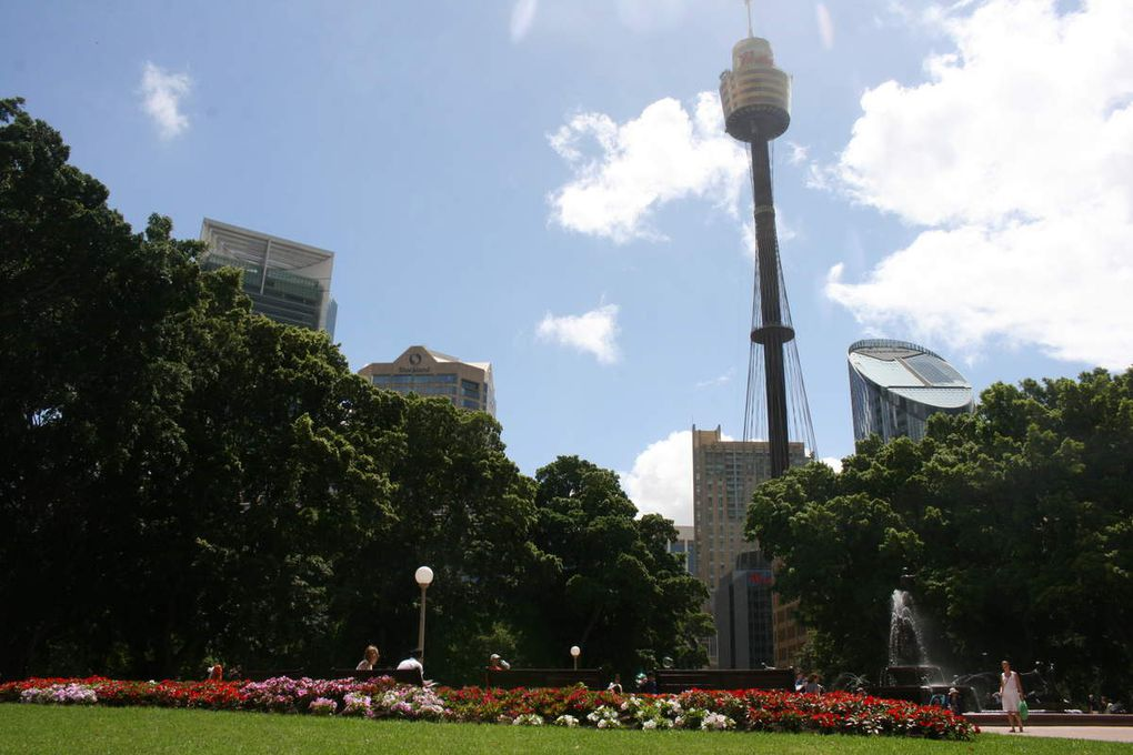 360° view of Sydney