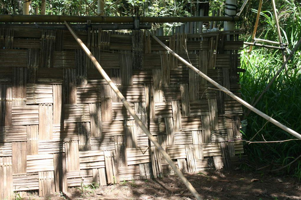 constructions en bambou / bamboo buildings