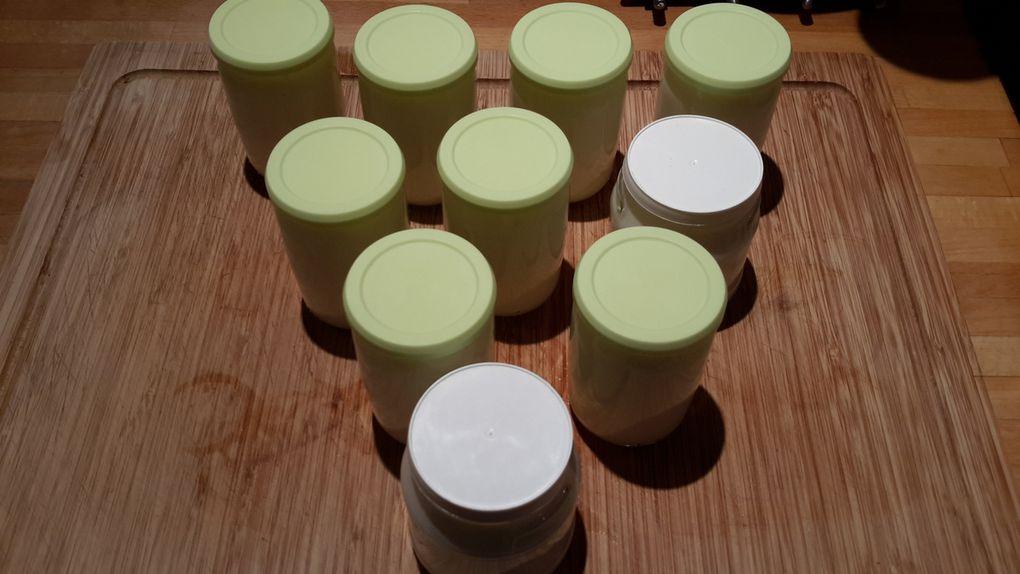 Recette et cuisson de yaourts à la vanille façon la laitière (au companion ou autres robots)