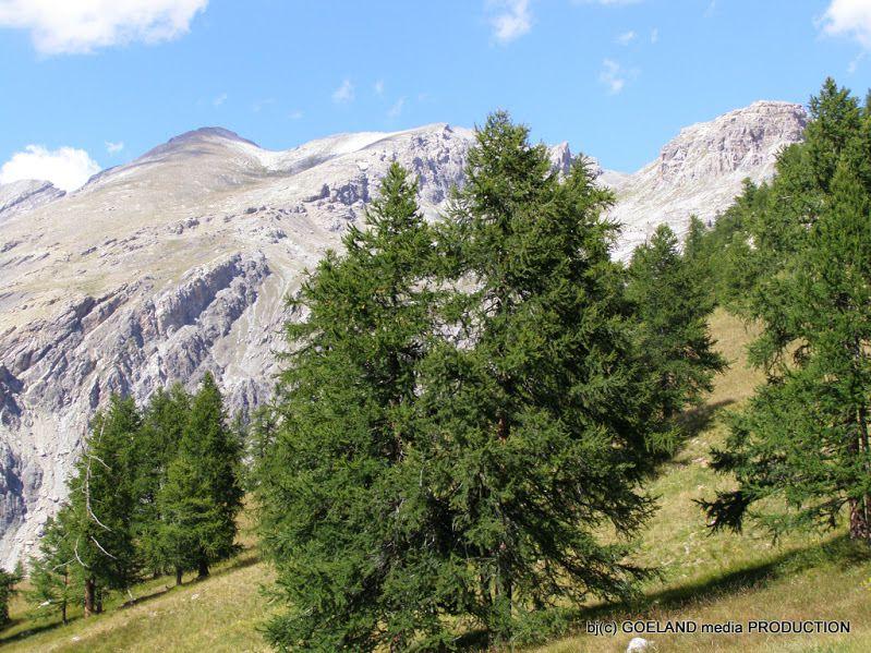 Photos ASPTT Montagne Rando Digne (c) - mise en page goelandmedia.prod@gmail.com