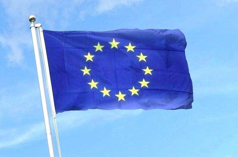 La Commission européenne doit faire appliquer plus fermement la directive sur les services :