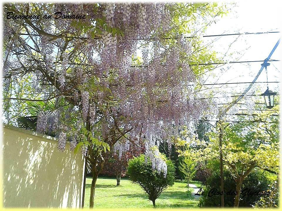 La terrasse au printemps / hivers