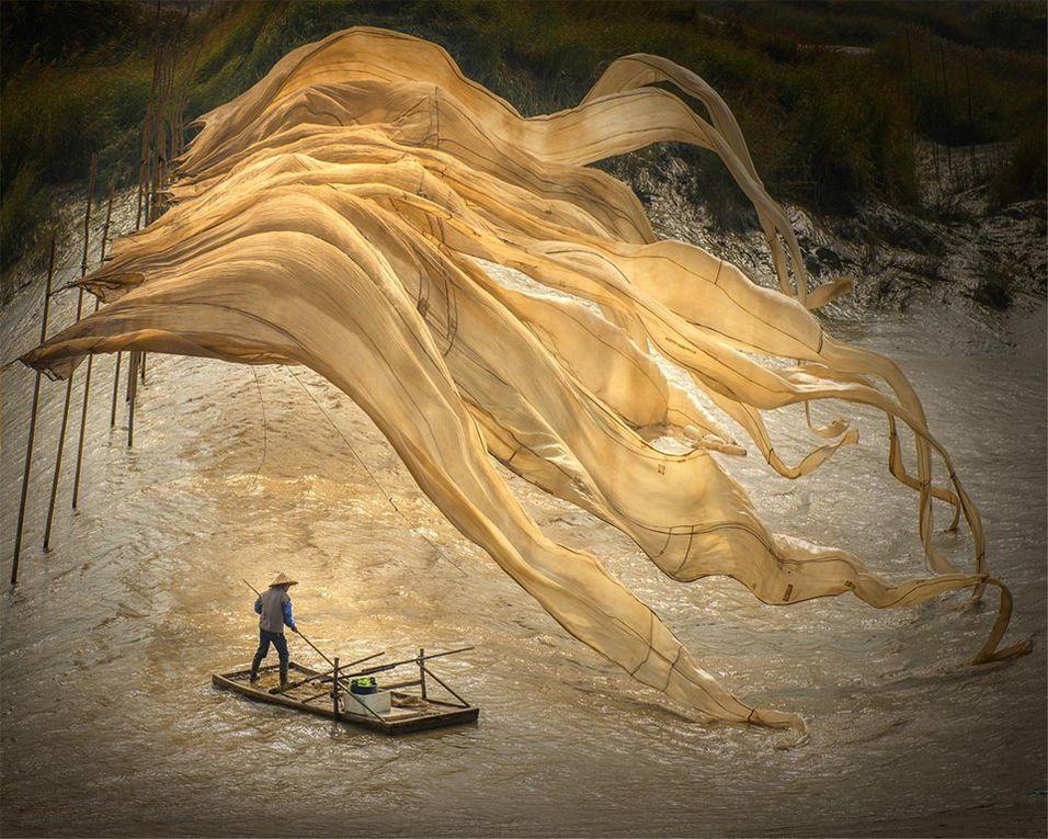 Divers - Photo - Art. Laura Callipote, Photographe.