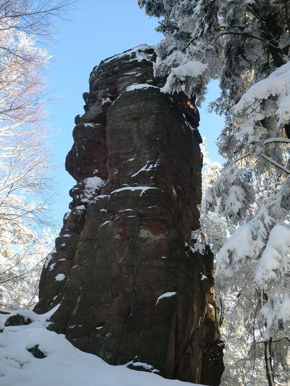 En cheminant vers le sommet du Spillberg, un petit coup d'oeil en contrebas, permet de découvrir le château de l'Ochsenstein sur son imposant rocher. Cette ruine, tout comme le Wuestenberg, fera l'objet d'un autre post.