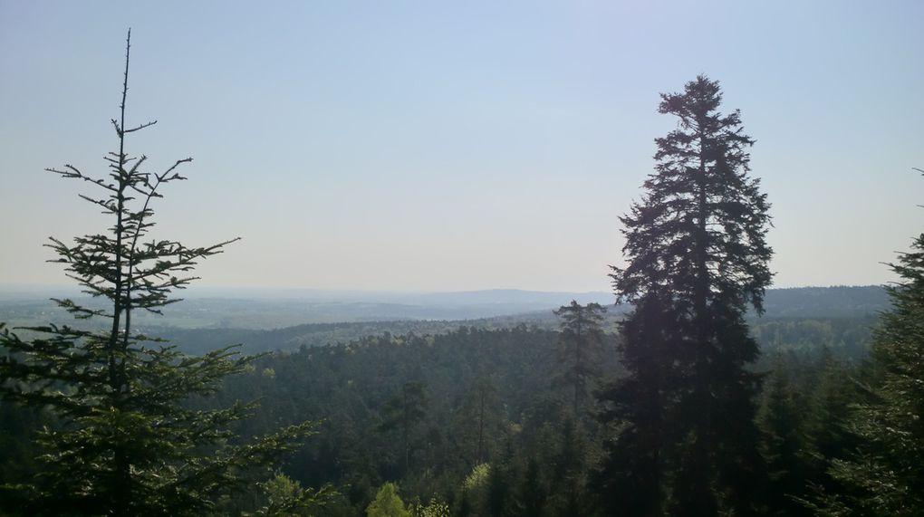 Des trouées dans les arbres permettent une superbe vue sur les vergers de la Sommerau. Et dire qu'on y a évité de peu le fameux golf!!!