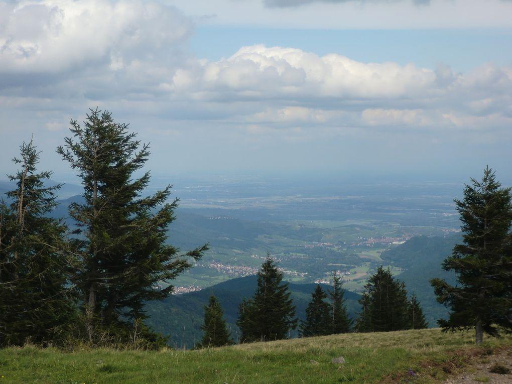 Point de vue panoramique : Grand-Ballon , vallon de Wasserbourg, vallée de Munster....