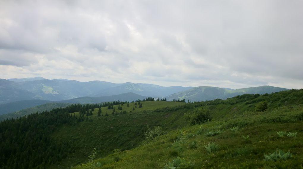 Vues sur les crêtes voisines depuis le Ringbuhl (1302 m).