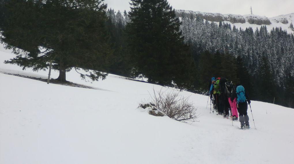 Avant d'atteindre l'arête Sud du Chasseron, il faut reprendre les 300 m de dénivelé. Photos de Ben + perso.