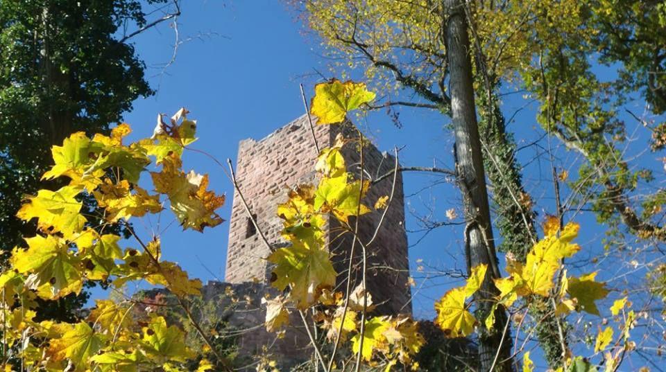 Brefs aperçus du Girsberg et du Saint Ulrich, sous le soleil de midi.