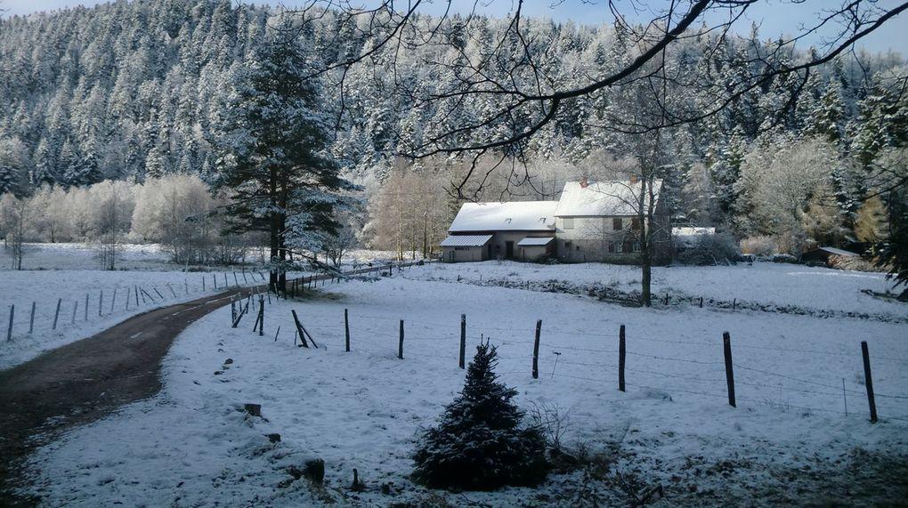 Au retour, en  descendant du Col du Schneeberg, passage par les fermes du Schneeberg avant de rejoindre la Schneematt.