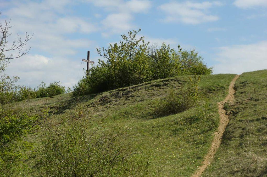 nous débouchons sur le superbe sentier sur le versant Ouest qui au milieu des pelouses sèches nous conduit sur le plateau sommital.