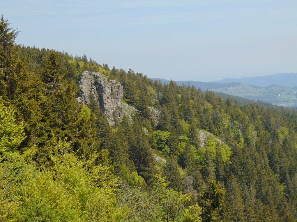 Vue sur le Grand Würtzelstein et ses effondrements rocheux.