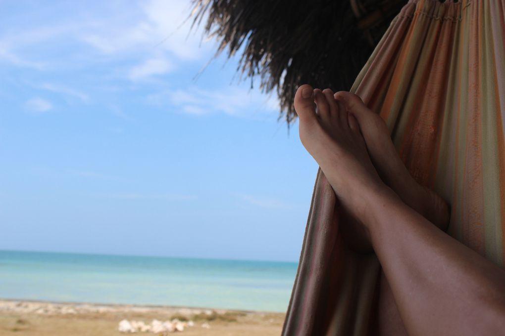 Mer calme et transparente, doigts de pieds en éventail dans le hamac, soleil et cocotiers, bien entendu, la première chose qu'on a faite a été d'enfiler les maillots de bain et d'aller se baigner!