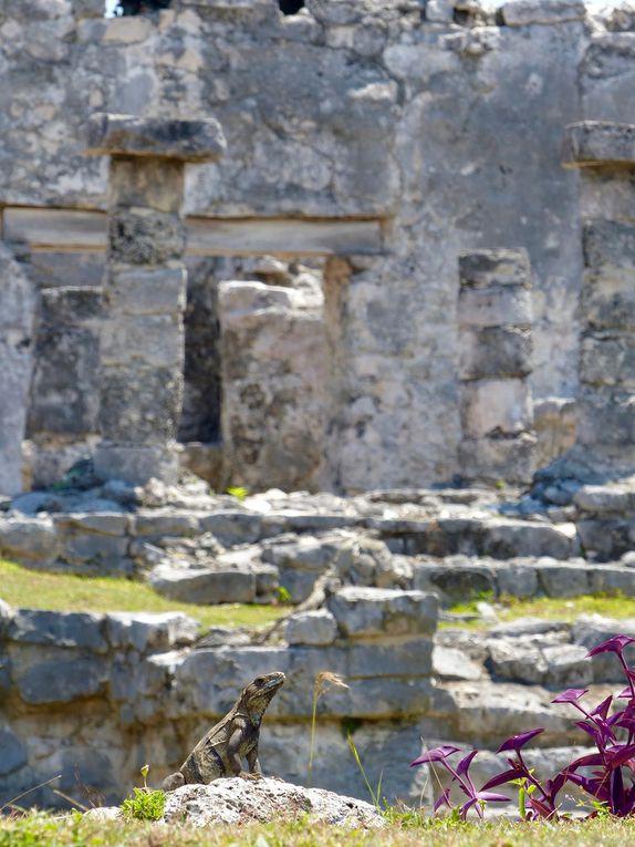 Tour du Yucatán en 7 jours - Partie 3