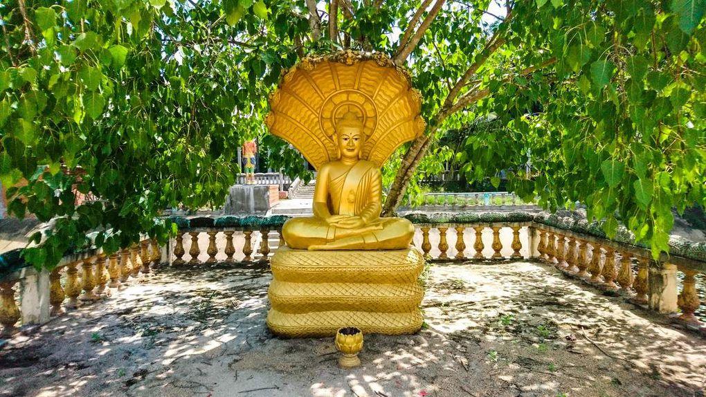 Stage Cambodge [9] : Immersion dans la vie locale