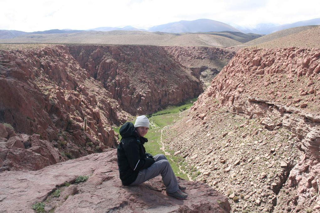 Expéditions : les geysers de Tatio et les Piedras Rojas