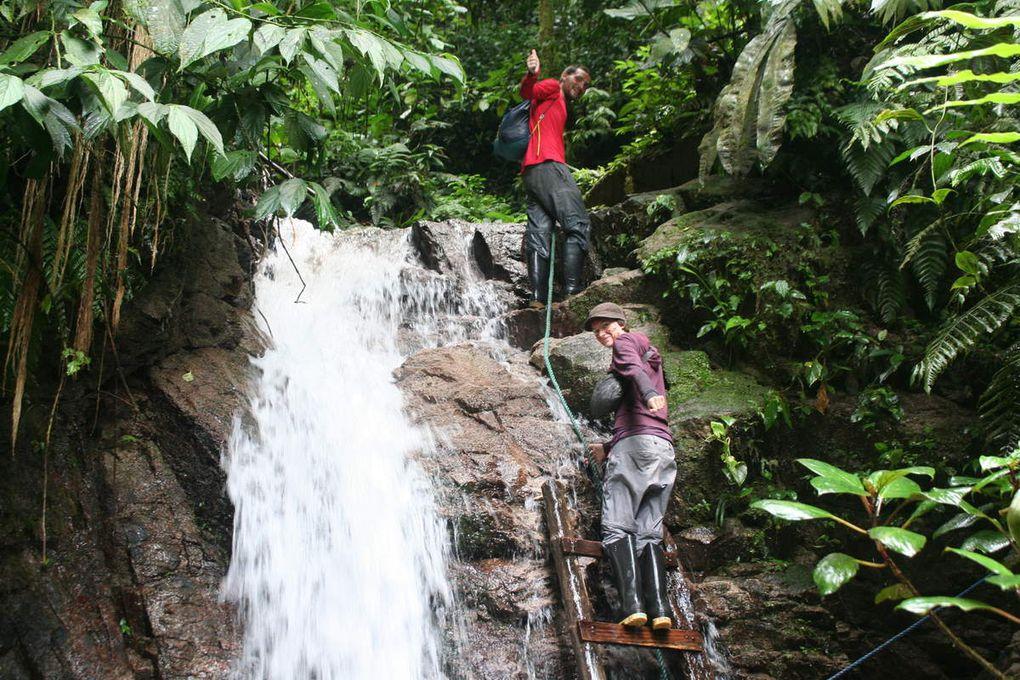 Tena : la forêt amazonienne : partie 1, canyoning