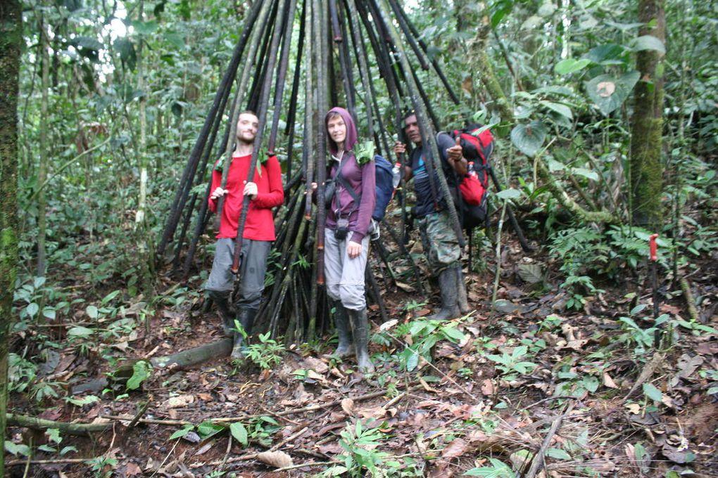 Tena, la forêt amazonienne- partie 2: Trek et Rafting