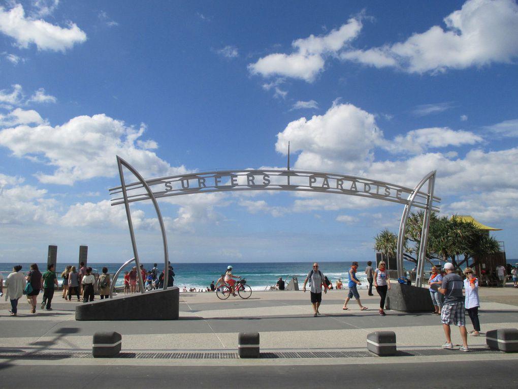 J98 : Gold Coast