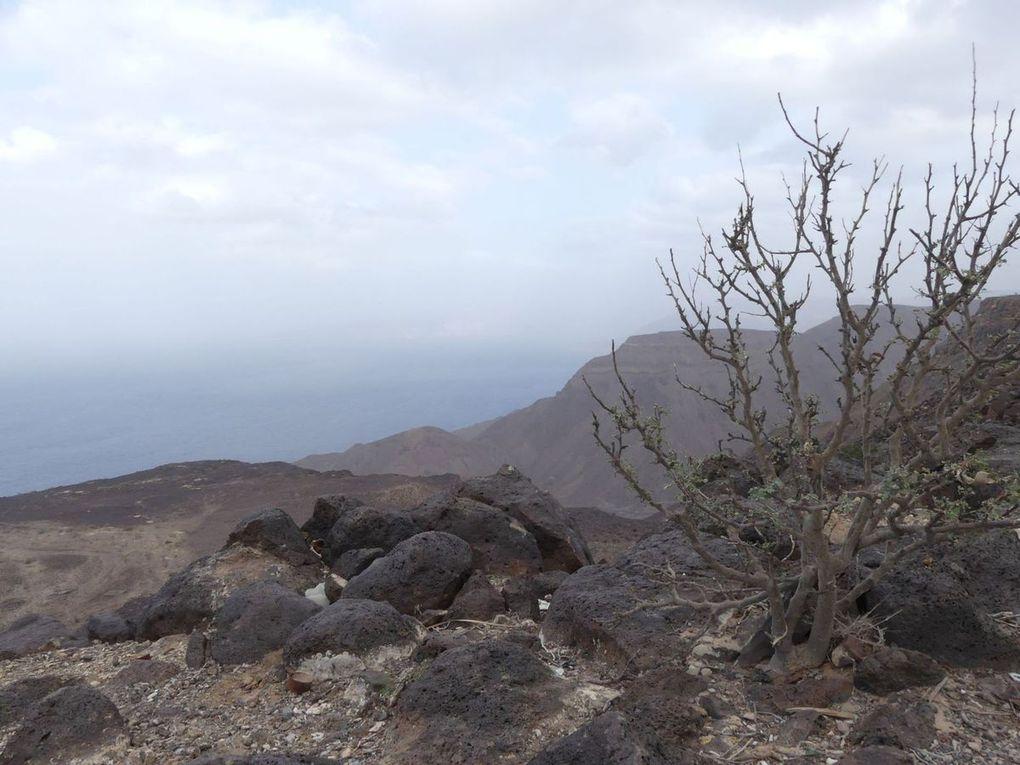 14 Djibouti - 6. bis 7. Februar 2017