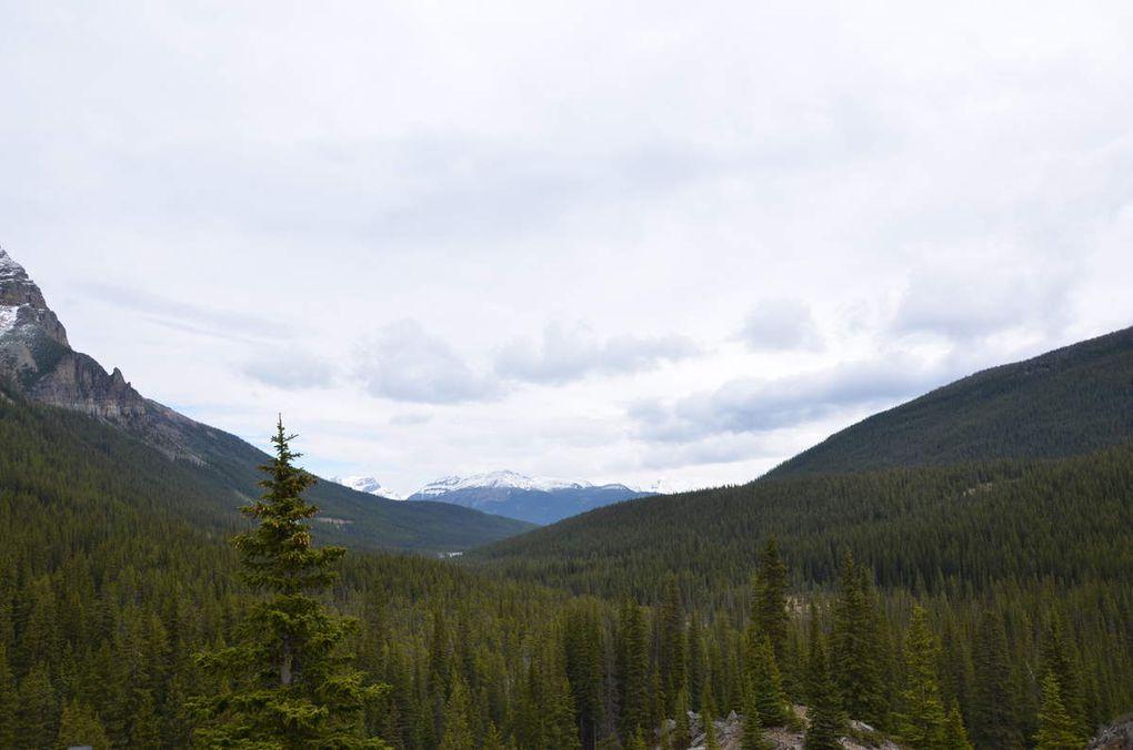 Banff et Jasper Park !!!