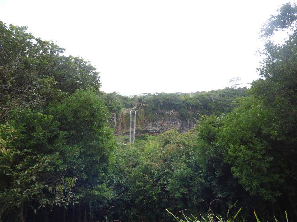 Temple de Grand Bassin, les chutes, la Terre de Couleurs, la Rhumerie et le Morne.