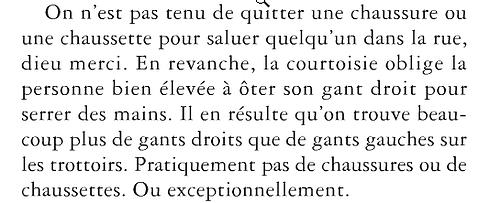 Brève histoire des choses de Jacques A. BERTRAND