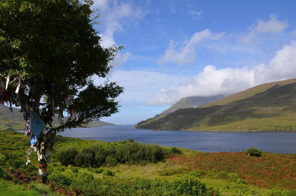 Killary Harbour