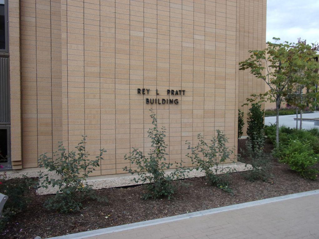 McKay et moi / Le bâtiment où je loge / Ma carte du MTC