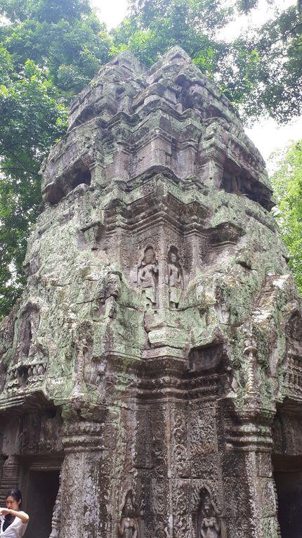 Angkor et le temple de Ta Prohm
