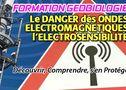"""METZ Formation Géobiologie : """"Le DANGER des ONDES ELECTROMAGNETIQUES et l electrosensibilité"""" Dim. 12 Juin"""