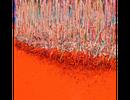 HUR Kyung-Ae : La peinture matière