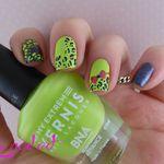 Noeud et tâches de léopard
