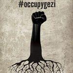 Solidaires de la résistance populaire en Turquie !