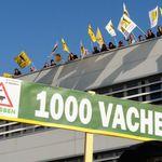 Ferme des 1000 vaches : le Tribunal Administratif confirme la légalité du permis de construire