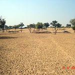 The Indus Valley Desert