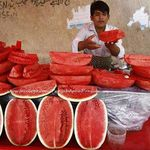 Very Red Watermelon in Pakistan