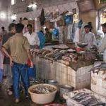 Karachi Fish Harbour