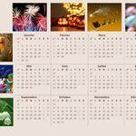 calendrier annuel 2017