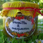 CONFITURE DE GROSEILLE A MAQUEREAU (thermomix)