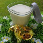 CREME AUX CARAMELS DURS ANGLAIS STYLE WERTHERS (thermomix)