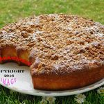GATEAU CRUMBLE (themomix)