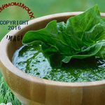 PESTO D'EPINARDS (thermomix)