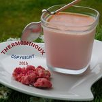 YAOURT AUX PRALINES ROSES MULTIDELICE  (thermomix)