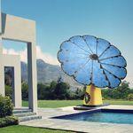 Une jolie fleur photovoltaïque