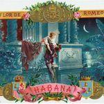 Association des cartes du Tarot de Roméo