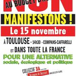 Manifestation du 15 novembre : des Hauts-Pyrénéens s'engagent