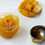Sorbet Pure Mangue