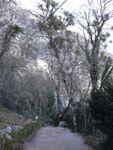 Provence : le site magique de la Sainte Baume