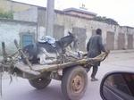 Y a-t-il des vétérinaires en Afrique ?